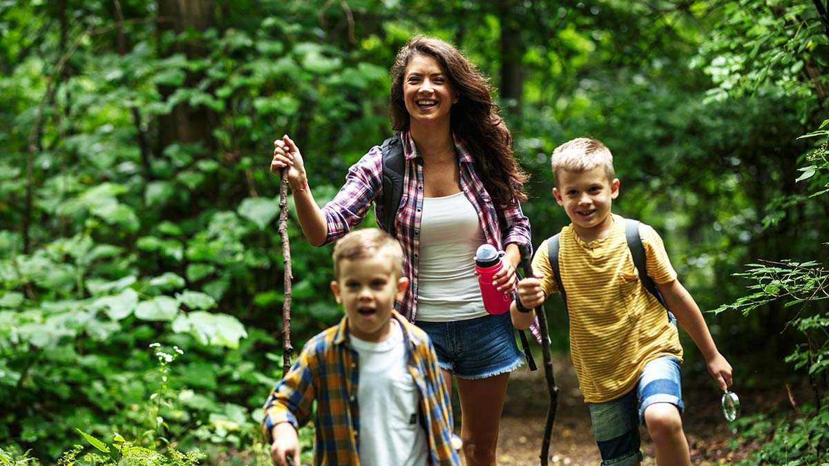 A family explores a forest